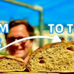The ONE SECRET That Makes You A BETTER SOURDOUGH BAKER